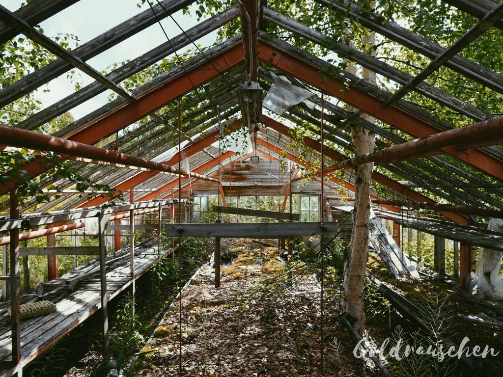 verlassenes Gewächshaus in Schwedisch-Lappland